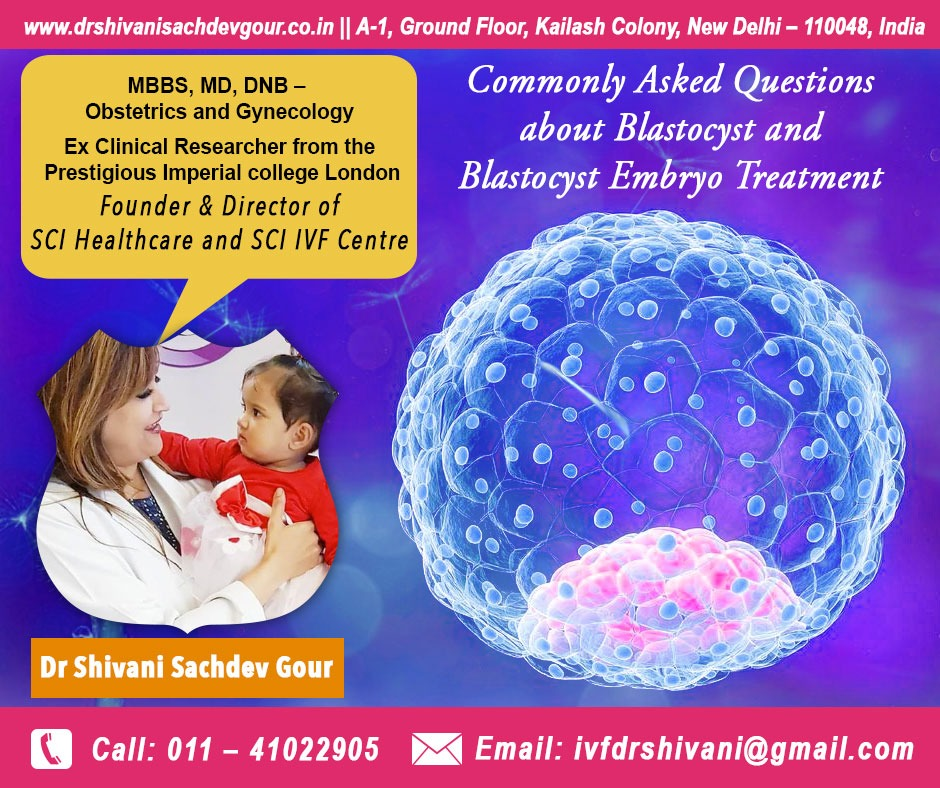 Commonly Asked Questions about Blastocyst and Blastocyst Embryo Treatment