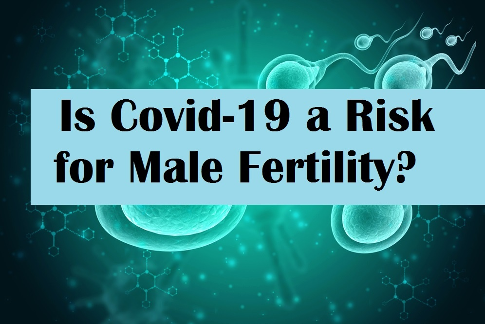 Is Covid-19 a Risk for Male Fertility